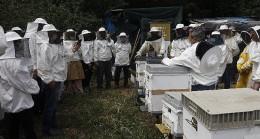 Balparmak Arıcılık Akademisi ile İstanbul İli Arı Yetiştiricileri Birliği İstanbul'a Yeni Arıcılar Kazandırdı